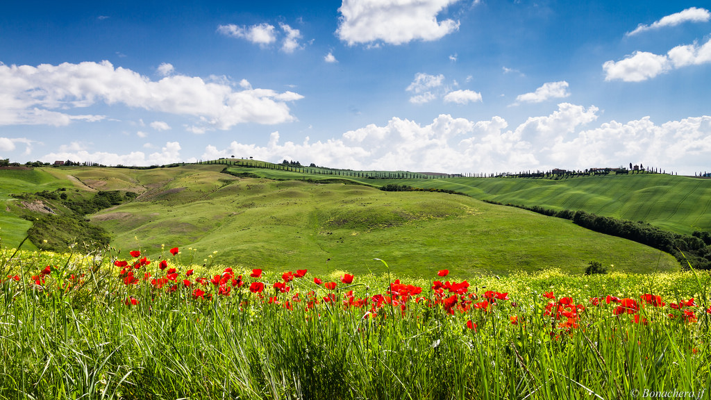 top places to visit in italy for summer holidays, krome italian refurbishings, tuscany